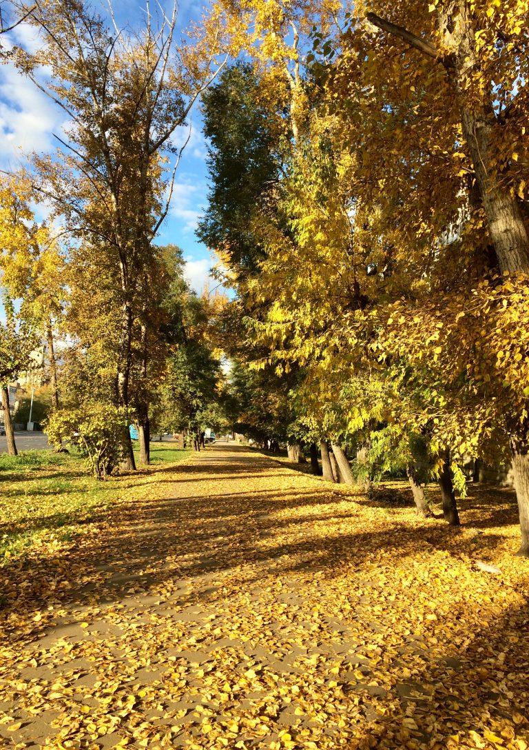 «Осень в городе»  Инна Петровна Ондар
